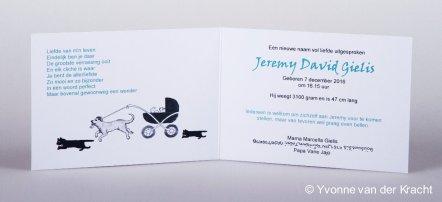 Geboortekaart met huisdieren, hond en poezen