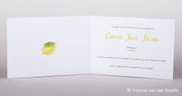 Voorbeeld binnenkant geboortekaartje kalligrafie